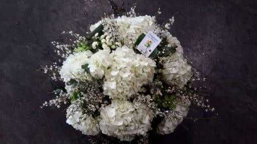 Coussin blanc hortensia