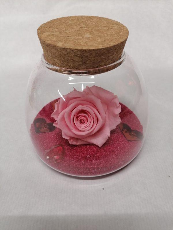 rose eternelle